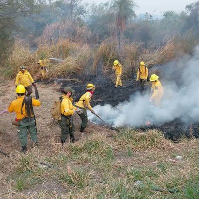 Ministro de la SEN dijo que se necesita mucha dosis de conciencia para prevenir incendios