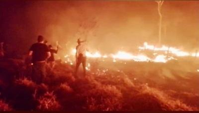 Incendios siguen ocasionando serios daños en Concepción
