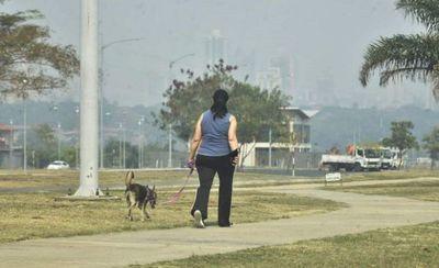 El humo es dañino para bronquios, pulmones, ojos y hasta el corazón