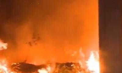 Incendios forestales en varias zonas del país