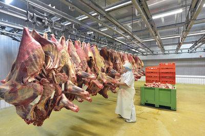 Brasil exportó 30% de la carne producida en el primer semestre