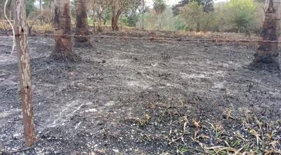 Incendio afectó a 10 hectáreas de la Reserva del Ybytyruzú – Prensa 5
