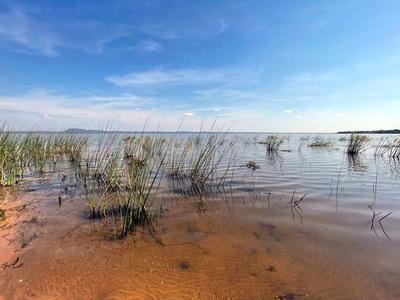 Lago Ypacaraí: demuestran una progresiva mejoría de la calidad del agua