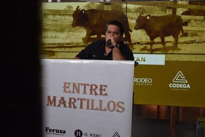 Entre Martillos vende hoy miércoles 1.500 vacunos de invernada por pantalla