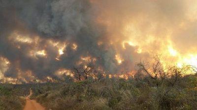 Fiscal adjunto dice que declaraciones de Cartes sobre quemas 'deberían analizarse'