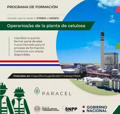 Llamado para participar del programa de formación de operarios de planta de celulosa en Concepción