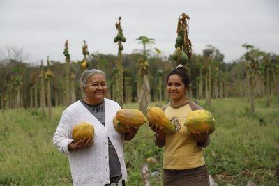 Emprendedora de Tenonderã incursiona en el cultivo del mamón, una alternativa rentable y prometedora