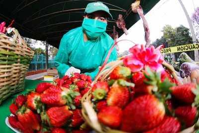 Productores realizan por tercer martes consecutivo la feria agropecuaria en el Multiplaza