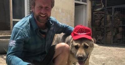 """Polémica por evacuación de 270 canes y gatos de un exmarine desde Kabul: """"¿Por qué mi hija vale menos que su perro?"""""""