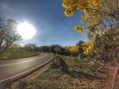 Habilitan ruta que une las localidades de Santa María de Fe y Santa Rosa en Misiones