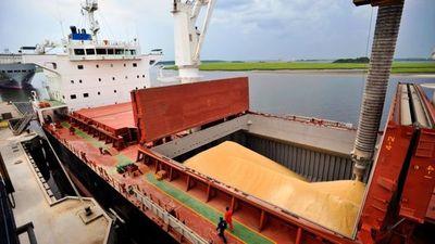 Graneleros navegan solo a mitad de capacidad y hay grandes retrasos en el comercio