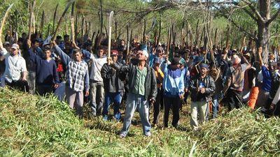 Gremios apoyan aumento de pena por invasión de tierras