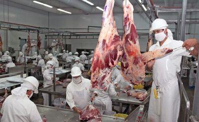 Nuevo récord: Paraguay logra 238.000 toneladas de carne bovina exportadas