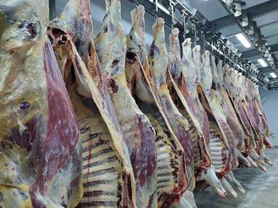 Carne Mercosur alcanza su mejor precio de la última década