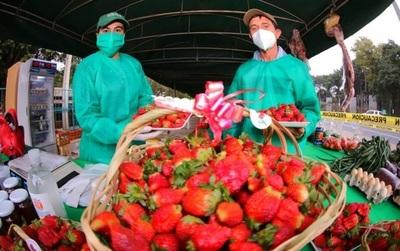 Realizarán feria de frutillas y orquídeas por tres días en Asunción