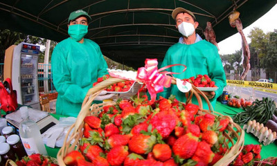 Desde el Ministerio de Agricultura invitan a tres días de feria de frutillas y de orquídeas