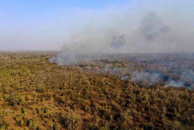 Bolivia: cerca de un millón de hectáreas dañadas por incendios
