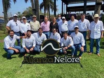 Ferusa vendió reproductores en Alianza Nelore a Gs. 26.172.911 de promedio general