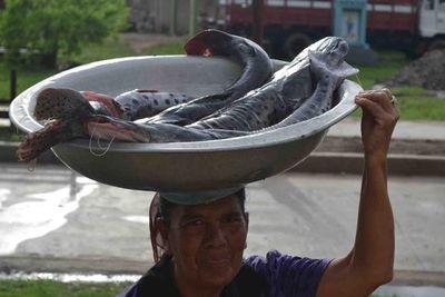 Aseguran subsidio para pescadores en PGN 2022