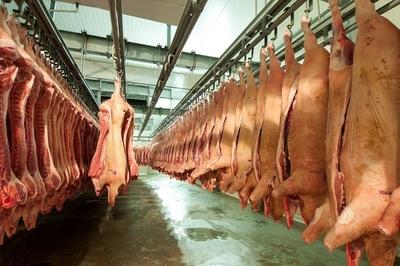 Los ingresos del sector porcino se incrementaron 47% hasta agosto
