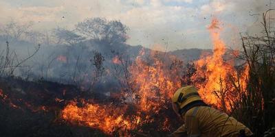 Últimas lluvias minimizaron posibilidad de incendios pero piden seguir previniendo