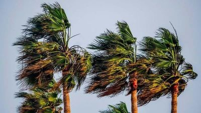 Fuertes vientos continuarán durante el resto del día, anuncia Meteorología