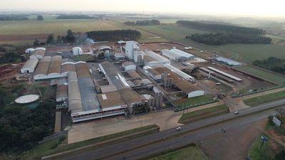 La industria láctea paraguaya sigue creciendo pese al COVID-19
