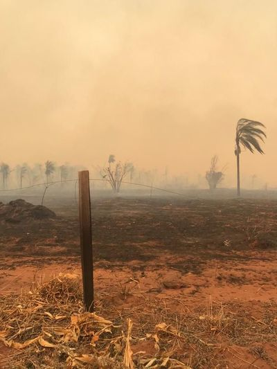 Alto Paraguay, el de más focos de calor en últimas 12 horas