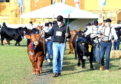 Expo Ganadera invita a muestra de la mejor genética del país y presentación de 1.800 animales