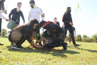 """""""CDE Respira"""" se propone plantar 5000 árboles en la capital de Alto Paraná"""