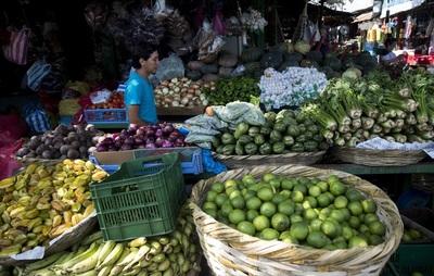 La economía de Nicaragua crecerá de 5 % a 7 % en 2021, según el Banco Central