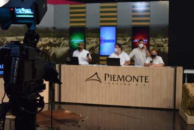 Mañana sábado, Piemonte remata más de 320 cabezas de invernada en feria televisada