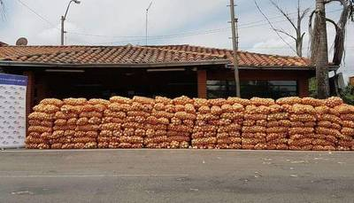 Productores de cebolla realizarán movilización este martes – Prensa 5