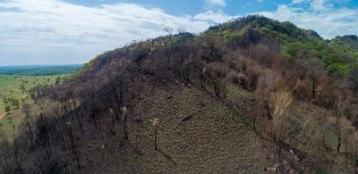 Invasión ecológica pone en riesgo las Tierras Sagradas de Jasuka Venda, advierten