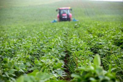 """ONU llama a """"reorientar"""" los apoyos a la agricultura que dañen al medioambiente"""