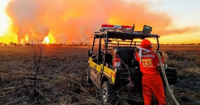 La Nación / Bolivia: incendios consumieron 1,65 millones de hectáreas