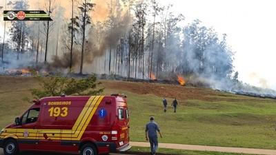 Empresario Celso Silveira Mello, su esposa e hijos mueren tras caída de avioneta