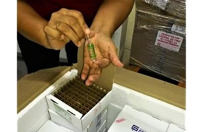 Importante descenso en demanda de medicamentos y oxígeno para pacientes COVID