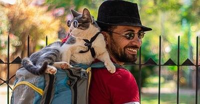Embalsamaron al gato mochilero y será ícono contra el maltrato animal
