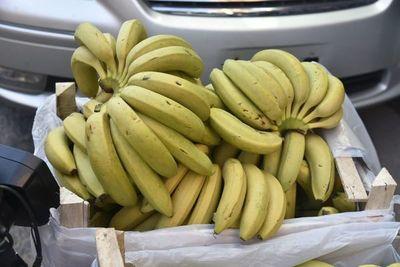 """Proyecto """"anti banana"""": Productores repudian plan que buscaría excluirlos de la merienda escolar"""