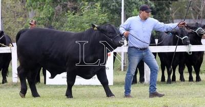 La Nación / Expo Nacional: 350 expositores ganaderos están presentes en la feria