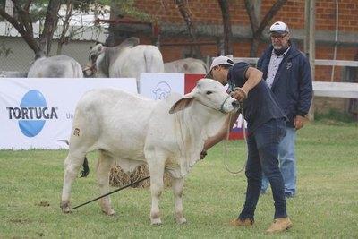 Crónica / ¡REGRESA LA EXPO! Cita en Mariano será todo ganadería