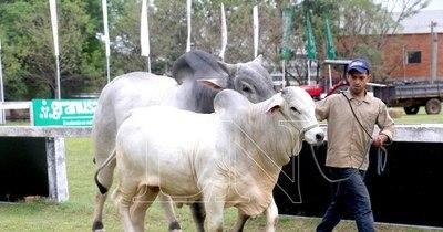 La Nación / Paraguay es un país adelantado en materia de reproducción ganadera