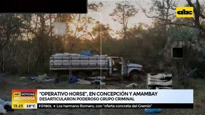 """""""Operativo Horse"""", en Concepción y Amambay"""