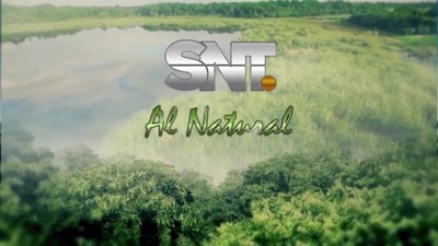 SNT Al Natural: La rica fauna del Chaco Paraguayo