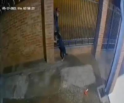 """Dueño de """"Coco"""" asegura que robo estuvo planeado, por la amigable reacción del perro"""