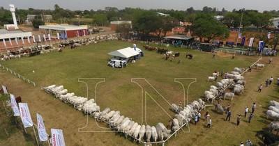 La Nación / Paraguay puede llegar a ser una de las naciones más prósperas gracias a la ganadería, afirman