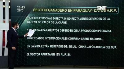 Economía en destaque: Sector ganadero en Paraguay