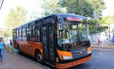 Las cuatro líneas de transporte que tendrán transbordo gratuito