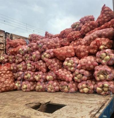 Barrio Fátima: Incautan más de 20 toneladas de productos frutihortícolas